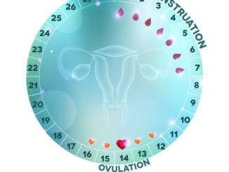 fruchtbare Tage bestimmen mit Ovulationstest und Fertilitätsmonitor